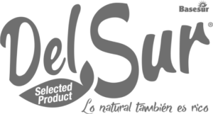 Logo Del Sur - Gris